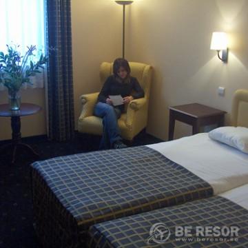 Villa Royal Hotel Bryssel 4